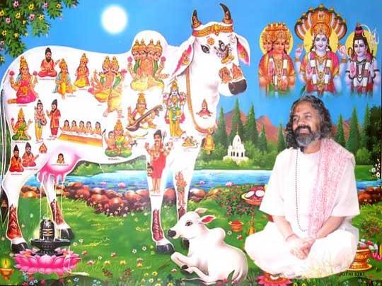 Shri Gopal Mani Ji Maharaj -3