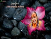 Jagadguru Shree Kripalu ji Maharaj Wallpaper,