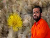 Shri Sureshanand Ji Maharaj Wallpaper,