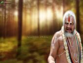 Swami Falahari Ji Maharaj Wallpaper,