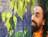 Swami Mukundananda Ji Wallpaper,