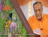 Swami Sukhabodhananda Ji February 2016 Monthly Calendar Wallpaper,