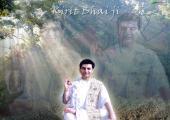 Kirit Bhai Ji Blessing, green and gray color