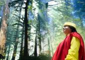 Visvas Meditation images, blue and brown color